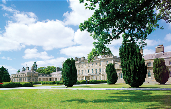 Carton House For Sale